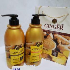 Cặp dầu gội xả gừng Ginger Valer 850ml