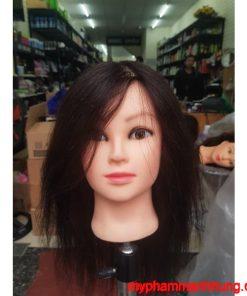 Đầu manocanh tóc thật để học nghề tóc AA